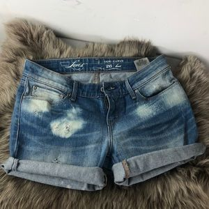 Levi's Woman's size 26 denim jean shorts ! *NWT*